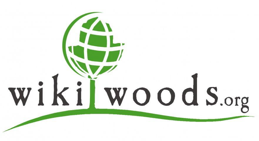 WikiWoods